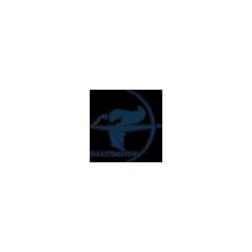 The Artemis Fund